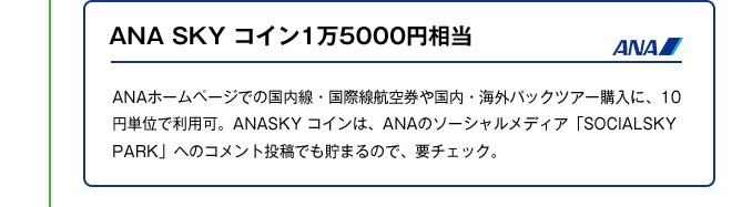 ANA SKY コイン1万5000円相当|ANAホームページでの国内線・国際線航空券や国内・海外パックツアー購入に、10 円単位で利用可。ANASKY コインは、ANAのソーシャルメディア「SOCIALSKY PARK」へのコメント投稿でも貯まるので、要チェック。